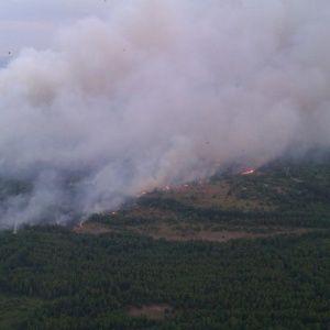 Пожежа у Чорнобильській зоні: вітер змінює курс на Київ