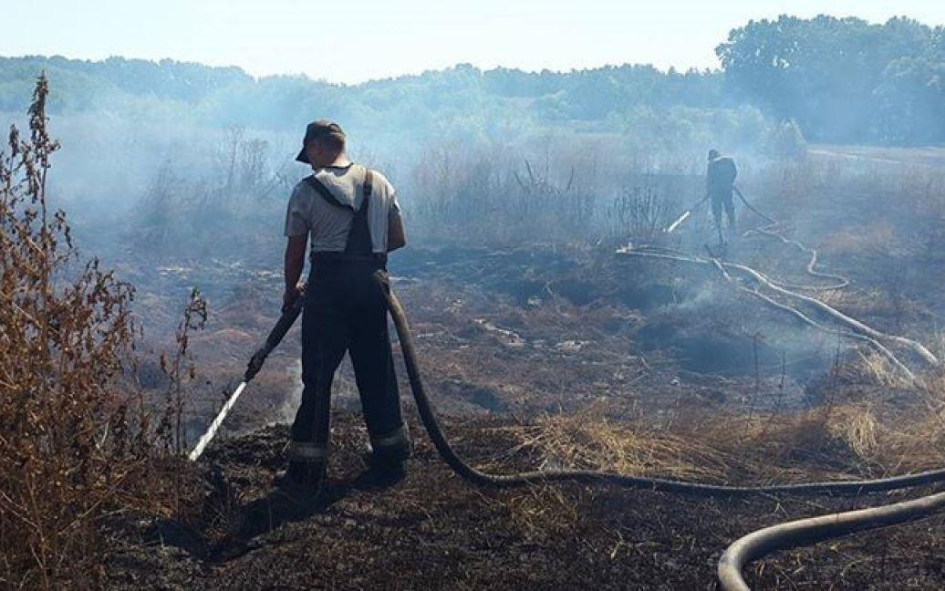 Торфяники горят в Буче / © ТСН.ua