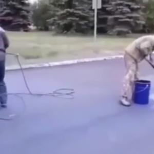 У Росії перед приїздом прем'єра робітники фарбували асфальт