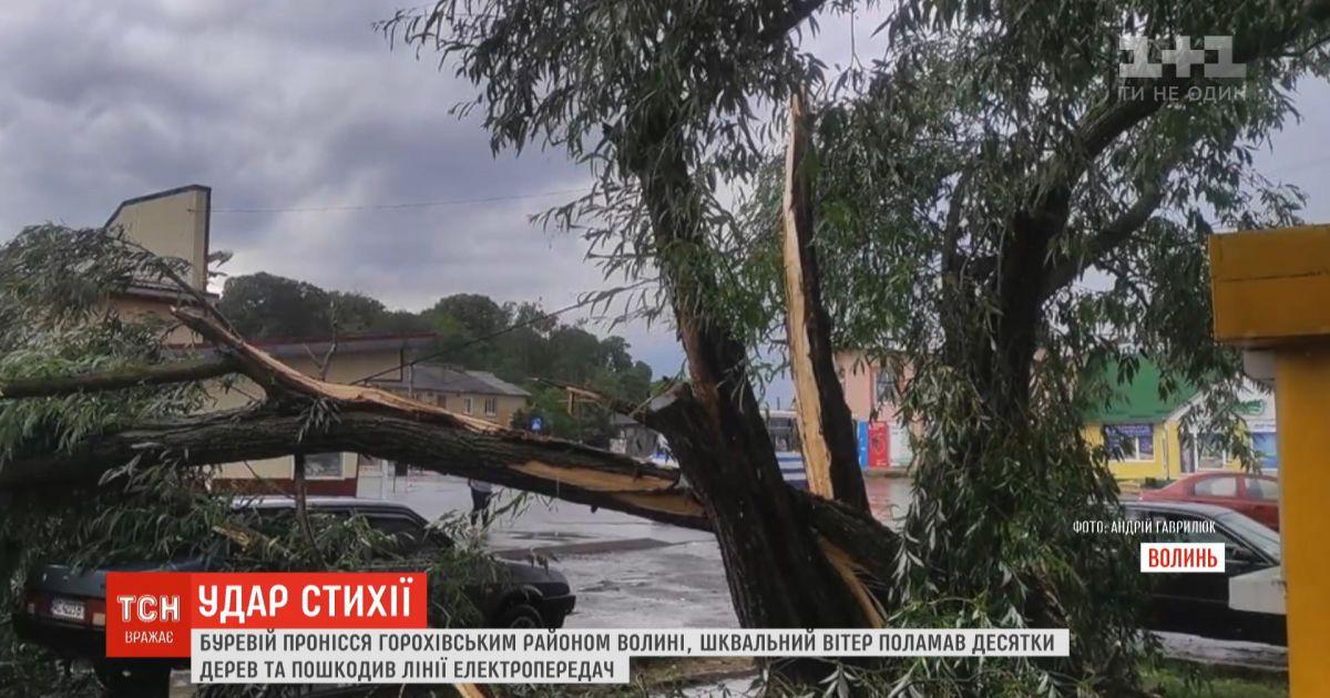 Ураган на Волыни поломал десятки деревьев и повредил линии электропередач
