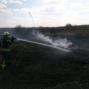 У Києві сталася пожежа: горів торф