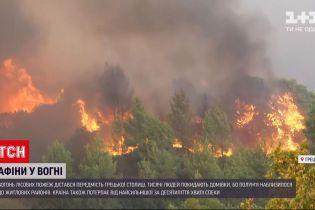 Новости мира: огонь лесных пожаров вплотную приблизился к домам в Афинах