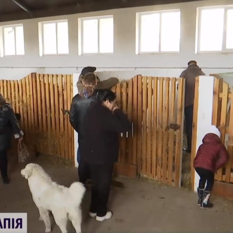 Ферма и сыроварня: во Львовской области священник учит работе людей с инвалидностью