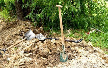 На Львовщине селяне лопатами и тяпками отбивали у полицейских пьяного водителя-подростка