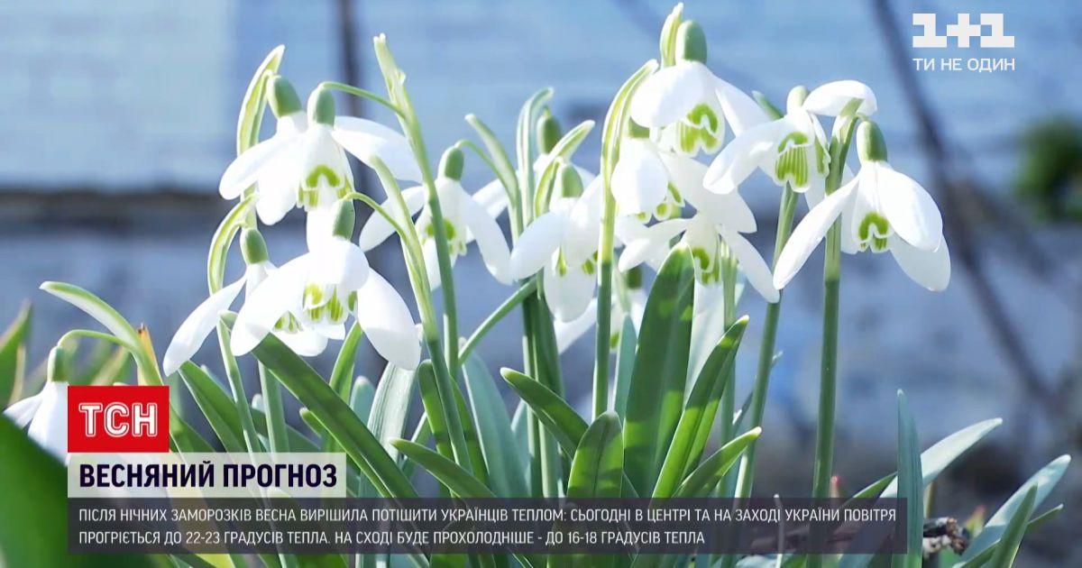 Погода в Україні: у центрі й на заході повітря прогріється до 22-23 градусів тепла