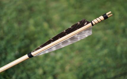 В Норвегии увеличилось число жертв стрелка с луком: подробности