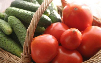 В Украине могут рекордно подорожать тепличные огурцы и помидоры