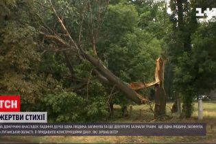 Новости Украины: Донбассом пронесся мощный ураган - два человека погибли