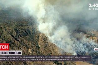 Новини світу: на південному заході США через аномально спекотне літо спалахують лісові пожежі