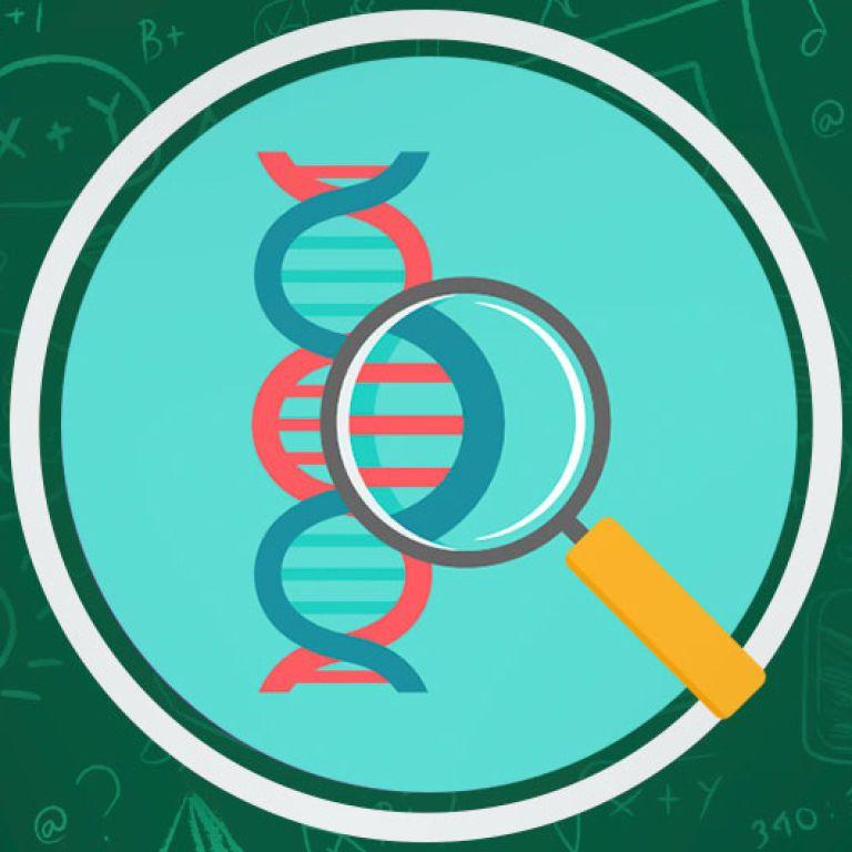 Уроки биологии онлайн для 7 класса: все видео