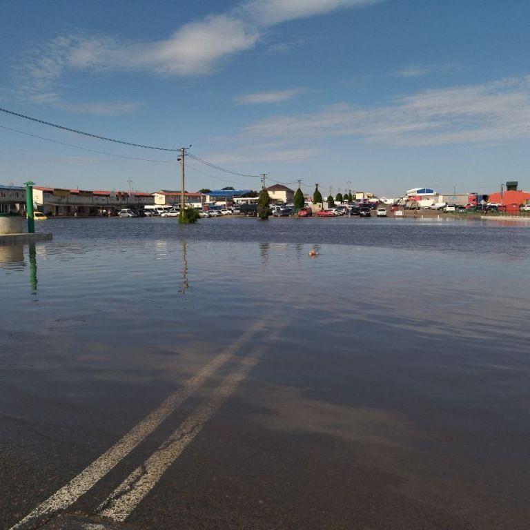 """Утворилось озеро, яке затопило авто та павільйони: в Одесі негода наробила лиха на ринку """"7 кілометр"""" (фото)"""