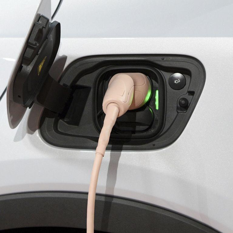 Эксперт рассказал, сколько времени нужно Украине для полного перехода на электромобили: цифра шокирует