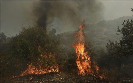 В Испании бушуют мощные лесные пожары: следователи подозревают поджог
