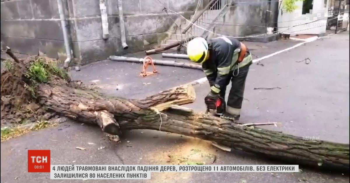 Непогода в Украине: четыре человека пострадали в результате падения деревьев