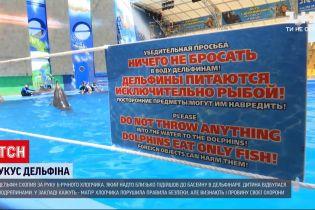 Новости Украины: мать парня, пострадавшего от укуса дельфина, признала свою вину