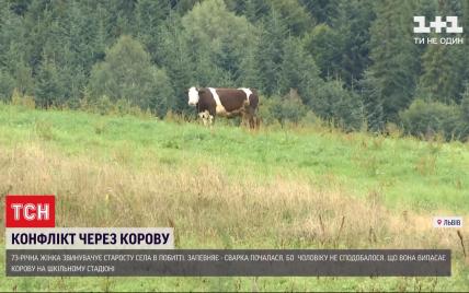 Избил, потому что корова паслась на стадионе: во Львовской области бабушка обвиняет в нападение старосту села
