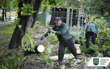 Смерть закоханих у Львові: 20-річний військовий був з Вінницької області, причиною трагедії могла бути блискавка