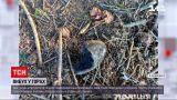 Новини України: що вибухнуло у Карпатах та в якому стані потерпілі