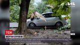 Новини України: у Львові здійнявся сильний вітер - двоє людей загинули, повалені десятки дерев