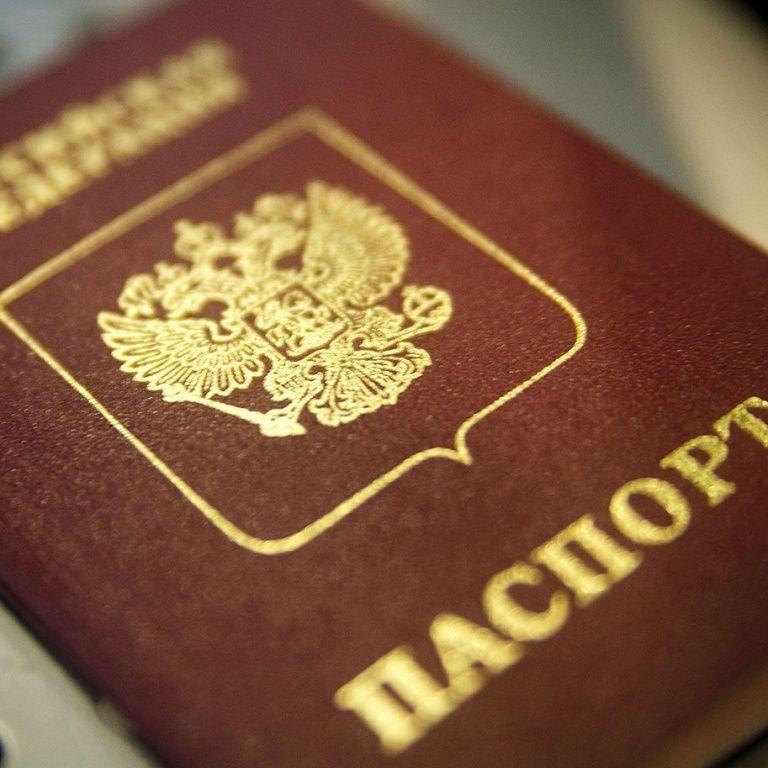 Семья россиян шла пешком из РФ ради статуса беженцев в Украине