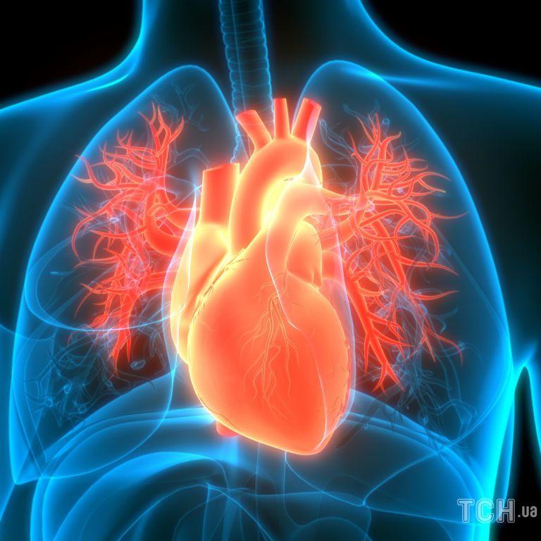 Синдром такоцубо або «розбитого серця»: причини, симптоми, лікування