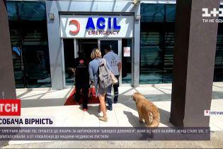 """Новости мира: в Турции пес бежал за """"скорой"""", в которой везли его хозяйку"""