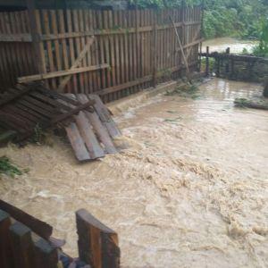 Люди по коліна у воді: після сильної зливи на Рахівщині затопило дороги, будинки і городи (фото, відео)