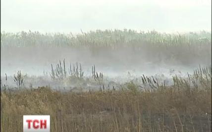 Киевщина уже больше недели страдает от дыма: спасатели надеются на дождь