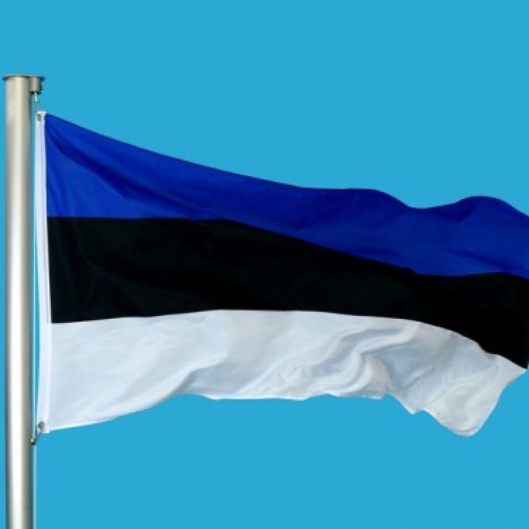 Естонія ухвалила декларацію на підтримку України через агресію РФ у Керченській протоці