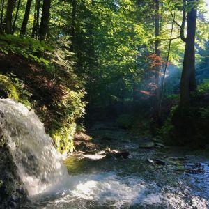 Село Лумшори на Закарпатті: релакс на природі та купання в чанах серед гір