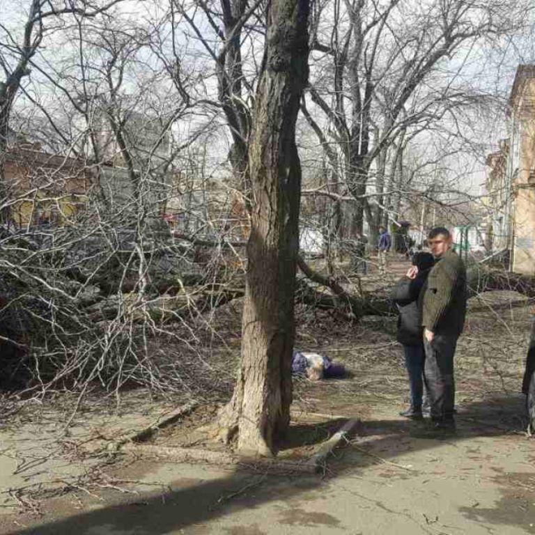 У центрі Одеси буревій повалив дерево і вбив літню жінку