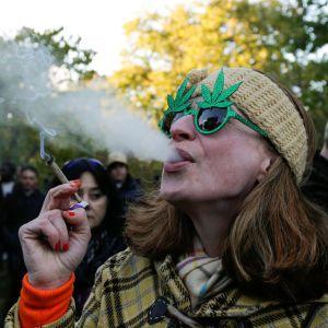 От медицинского каннабиса до полного легалайза. Инфографика правового статуса марихуаны в мире