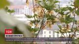 Погода в Украине: наступила метеорологическая осень - нас ждет неделя резкого похолодания