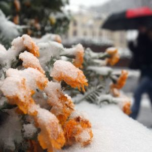 Погодные аномалии: какие стихии бушуют в мире и к какой зиме готовиться в Украине