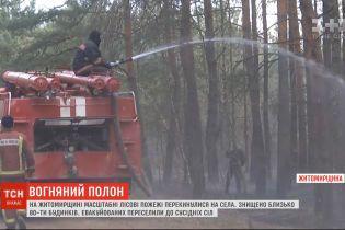 Во что масштабные пожары в Житомирской области превратили близлежащие села