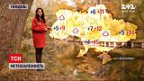 Погода в Україні: з середи до регіонів дістанеться дощовий циклон