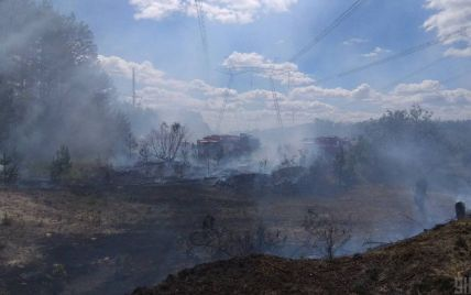 Збитки від пожежів Чорнобильській зоні сягають десятків мільйонів гривень - ДАЗВ
