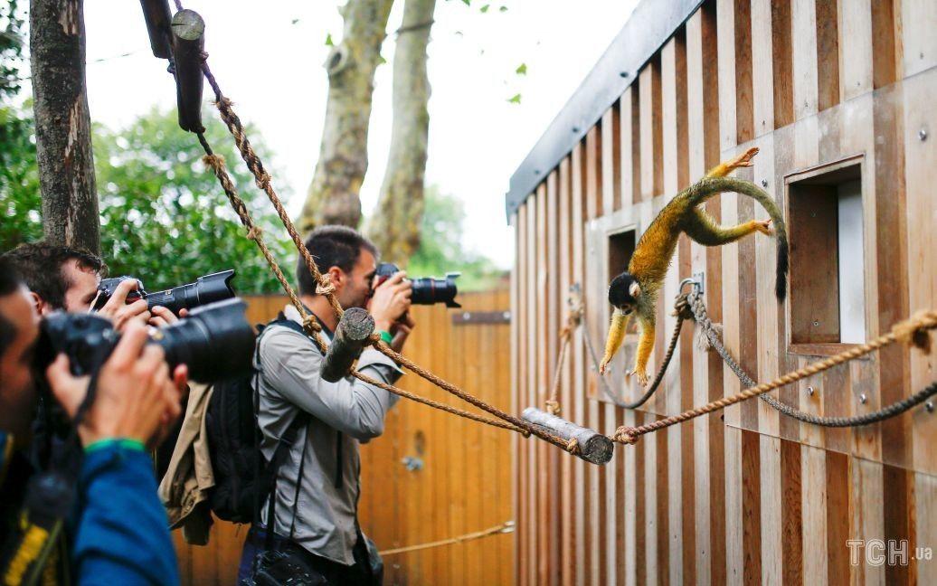 Зоопарк Лондона / © Reuters