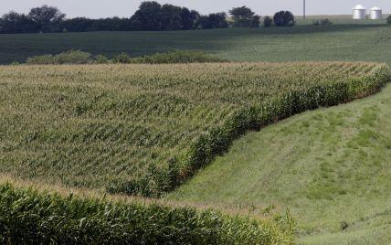 Продаж землі: уряд затвердив порядок перевірки покупців нотаріусами