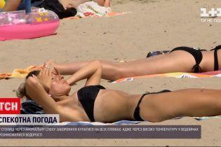 Новости Украины: из-за цветения води в Киеве запрещено купаться на всех коммунальных пляжах
