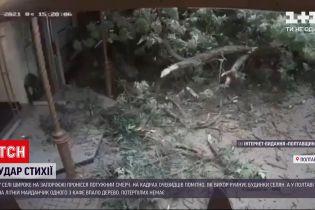 Погода в Україні: 60 населених пунктів залишилися без електрики через негоду