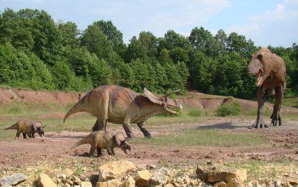 """""""Чрезвычайное открытие"""": ученые нашли отпечатки лап одного из последних динозавров"""