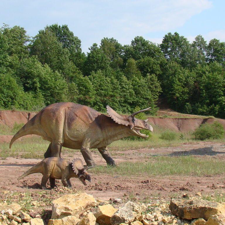 """""""Надзвичайне відкриття"""": вчені знайшли відбитки лап одного з останніх динозаврів"""