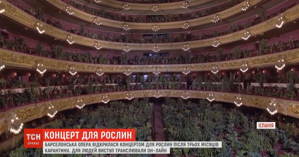 Концерт для растений: барселонская опера открылась после трех месяцев карантина