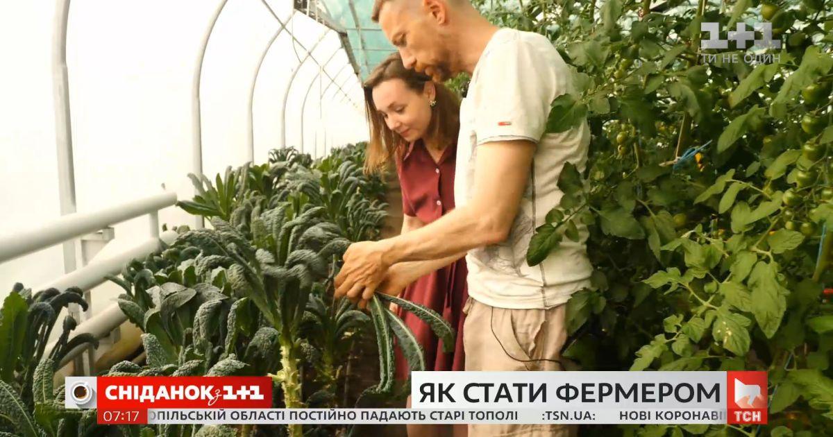 Как стать фермером — советы успешных украинских производителей