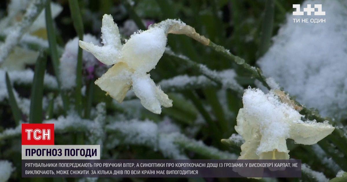 Погода в Украине: спасатели предупреждают о порывистом ветре до 20 метров в секунду