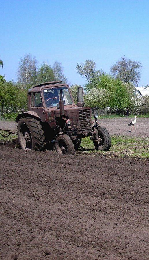 Шмигаль назвав мінімальну вартість гектару землі