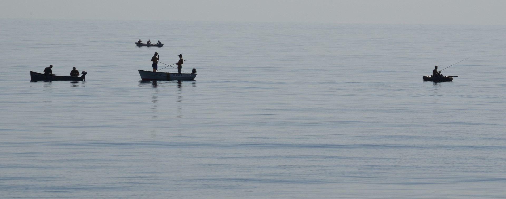 Украинские рыбаки обеспокоены действиями РФ у берегов Крыма