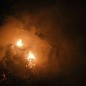 Пожежі у Туреччині: почалася масова евакуація туристів з готелів та пляжів