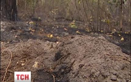 На Киевщине из-за пожара на торфяниках в дыму оказались 5 сел